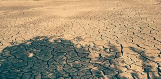 dried-up-land-water